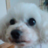 kei_zacky