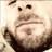 AndreaBenecchi profile