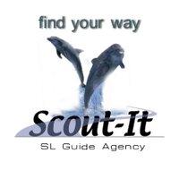 Scout-It™ | Social Profile