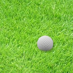 GolfLama