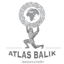 ATLAS BALIK's Twitter Profile Picture