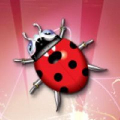 Bug Multisystem Ltd.