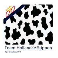 team_hs