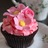 CupcakeNZ profile