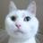 The profile image of seoyukinari