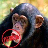行方@先細 | Social Profile
