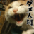 Hayato@土曜日はスイーツつくるのアイコン