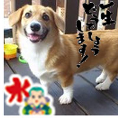 りあん✦ファイト東北   Social Profile