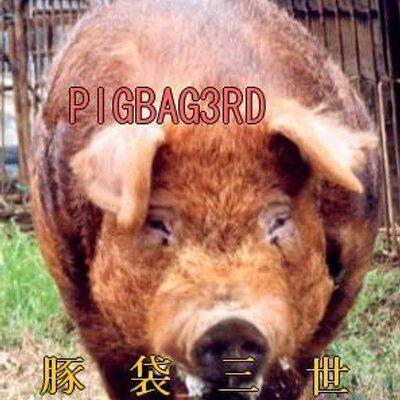豚袋 | Social Profile