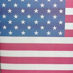 Love USA Social Profile