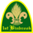 1stBinbrkScouts