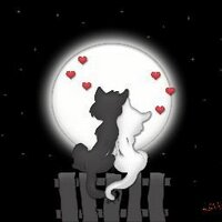 LoveIsLouder1123   Social Profile