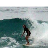 William Reef   Social Profile
