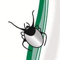 Lyme Disease Action | Social Profile
