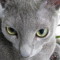 yotaro_3   Social Profile