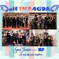 ELF Indonesia 4 GDA | Social Profile