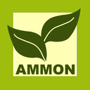 AMMON KG
