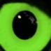PRESENT FUTURE FILMS's Twitter Profile Picture