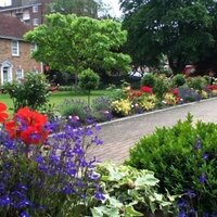 percy greenfingers | Social Profile