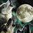 Wolf Moon Backs HCQ b/c Loves The Taste of Quinine