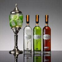 Fontaine Absinthe | Social Profile