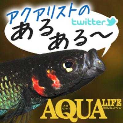 月刊アクアライフ編集部 | Social Profile