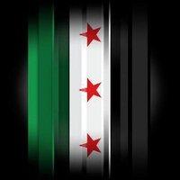 Syrian Thinker | Social Profile