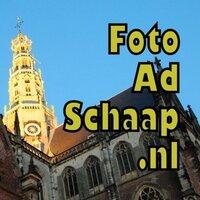 fotoAdSchaap