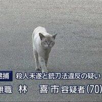 古川 | Social Profile