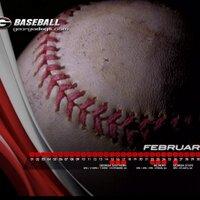 UGA Baseball Fans | Social Profile