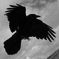 M Raven | Social Profile