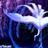 blue_anole_