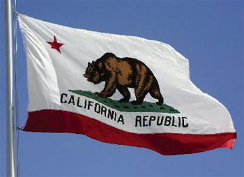 California News Now Social Profile