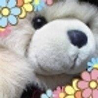 くま子1号 | Social Profile