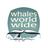 @WhalesWorldwide
