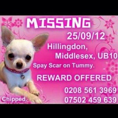 Find Stolen Phoebe | Social Profile