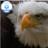 Leona Quigley twitter profile