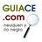 guiace_com