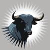 Bull100