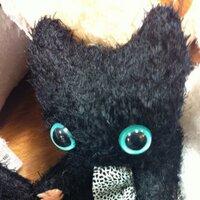 Blackcat - Jay | Social Profile