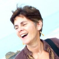 Christine Negroni | Social Profile