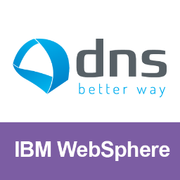 DNS WebSphere News