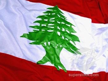 Lebanese Social Profile