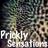 @PricklySense