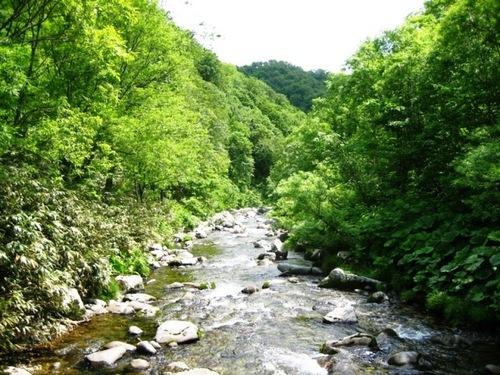 林業ニュース Social Profile