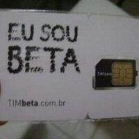 lion_TIM_BETA