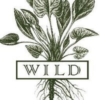 WILD | Social Profile