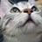 cat_tail_info