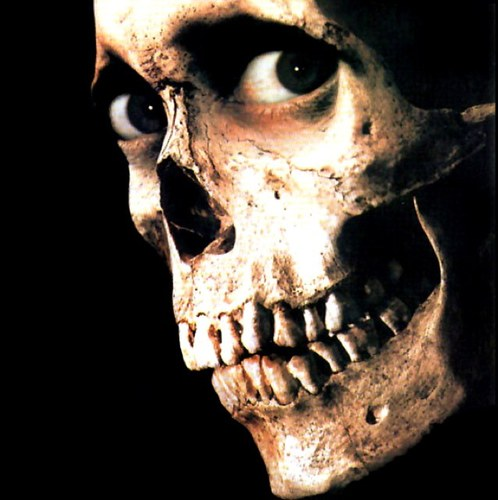 31 Nights of Horror Social Profile