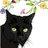 @kittenswhiskers
